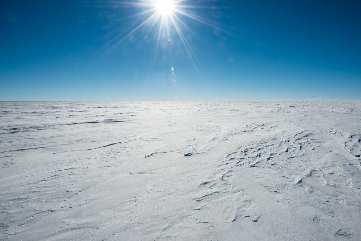 Wind sculpts snow into ridges called sastrugi